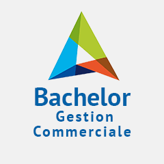 BACHELOR Chargé(e) de Gestion Commerciale en alternance à Nancy